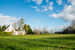 牧草地と点在する家屋の写真素材 [FYI01710918]