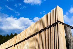 乾燥するため立ち並べられた材木の写真素材 [FYI01710927]