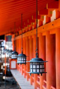 厳島神社回廊の軒先に並ぶ吊り灯籠を見る風景の写真素材 [FYI01710948]
