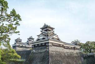 宇土櫓越しに大小二つの天守を見る熊本城風景の写真素材 [FYI01711020]