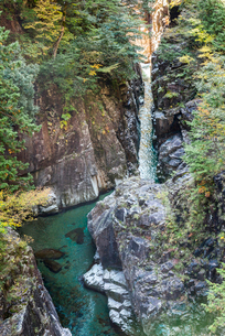 断崖の川浦渓谷の写真素材 [FYI01711127]