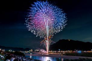 全国選抜長良川中日花火大会の打ち上げ花火の写真素材 [FYI01711159]
