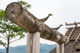 吉野ケ里遺跡木彫りの鳥飾りのある丸太門上部を見る風景の写真素材 [FYI01711256]