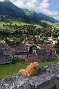スイス シャトーデー集落とネコ 夏の写真素材 [FYI01711515]