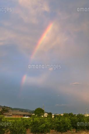 虹の写真素材 [FYI01711850]