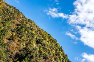 雲ある青空と紅葉の山肌を見る風景の写真素材 [FYI01712016]