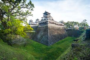 宇土櫓越しに大小二つの天守を見る熊本城風景の写真素材 [FYI01712050]
