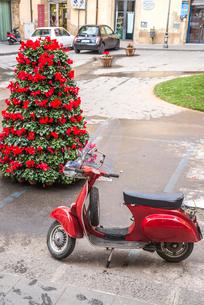 赤いシクラメンのツリーと赤いバイクを見る街角風景の写真素材 [FYI01712425]