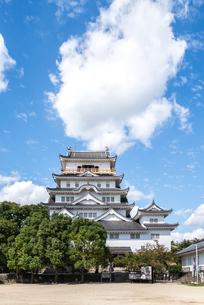 樹木越しに見る福山城天守閣正面の写真素材 [FYI01712455]