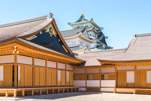 名古屋城本丸御殿越しに大小天守を見るの写真素材 [FYI01712461]