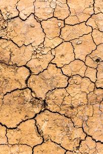 ヒビ割れの地面の写真素材 [FYI01712472]