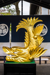 名古屋城の展示金鯱の写真素材 [FYI01712478]