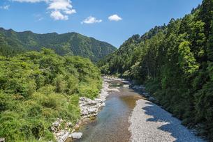 森に囲まれた板取川風景の写真素材 [FYI01712530]