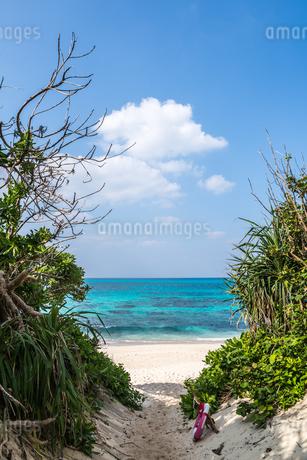 コバルトブルーの東シナ海と白浜の長間浜を望むの写真素材 [FYI01712534]