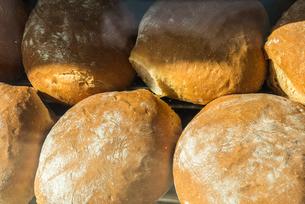 並ぶ丸いフランスパンの写真素材 [FYI01712570]