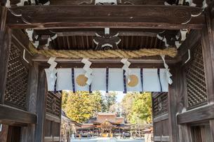 多賀大社御神門より見る拝殿風景の写真素材 [FYI01712650]