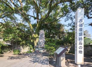 石碑を見る西郷隆盛終焉の地の写真素材 [FYI01712731]