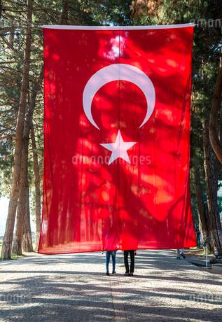 並木道に大きなトルコ国旗の写真素材 [FYI01712894]