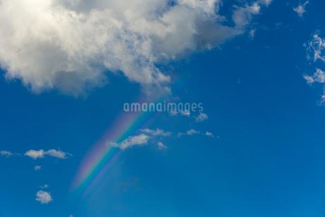 虹の写真素材 [FYI01713036]
