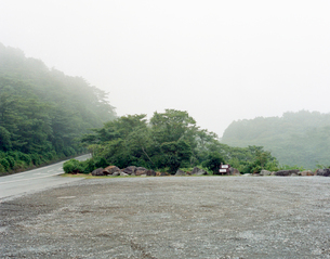 道路脇の木の写真素材 [FYI01713138]