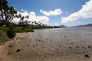 ハワイ州オアフ島ホノルル 透き通る海の写真素材 [FYI01713317]