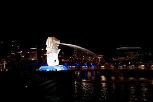 マーライオンとマリーナ・ベイの夜景の写真素材 [FYI01713464]