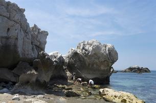 白崎海岸の写真素材 [FYI01713711]