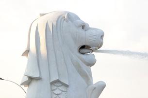 湾にそそぐマーライオンの噴水近景の写真素材 [FYI01713911]