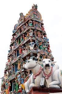スリ・マリアマン寺院の門塔ゴープラムに彫られた神々の写真素材 [FYI01713987]
