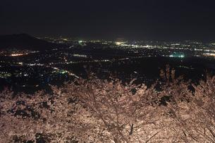 桜夜景 紀ノ川の写真素材 [FYI01714048]