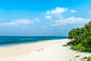 遠く伊良部島を望むコバルトブルーの東シナ海と白浜の長間浜の写真素材 [FYI01714138]