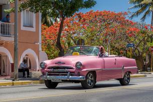 キューバ バラデロ クラシックカーの写真素材 [FYI01714728]