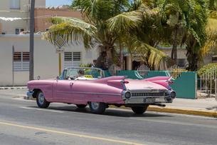 キューバ バラデロ クラシックカーの写真素材 [FYI01714730]