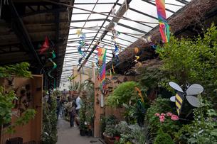シテ島 軒をつらねる花市のお店の写真素材 [FYI01714769]