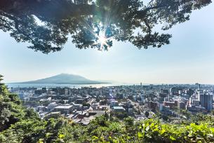城山より樹木越しに鹿児島市街地と桜島を望むの写真素材 [FYI01715038]