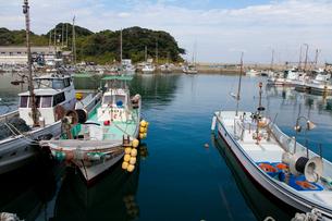 藍島の港の写真素材 [FYI01715278]