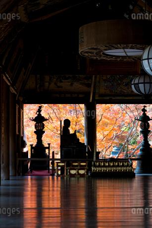 長谷寺礼堂 びんずる尊者と紅葉の写真素材 [FYI01715400]