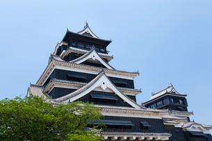熊本城 天守閣の写真素材 [FYI01715412]