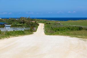 与論島の一本道の写真素材 [FYI01715618]