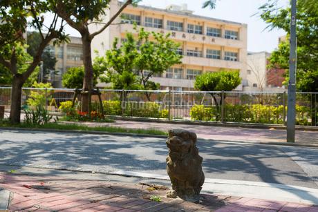 道ばたのシーサーの写真素材 [FYI01715853]