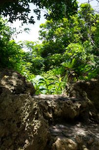 世界遺産 斎場御嶽 久高山遥拝所からの眺望の写真素材 [FYI01716069]