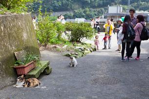 台湾、猫村の坂道の写真素材 [FYI01716089]