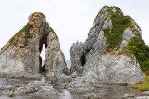 佐渡島 夫婦岩 近景の写真素材 [FYI01716090]