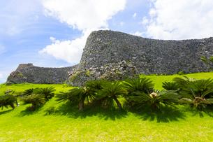 沖縄世界遺産、今帰仁城跡の城壁と椰子の木の写真素材 [FYI01716144]