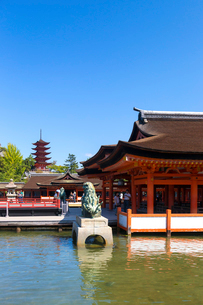 宮島 厳島神社の写真素材 [FYI01716287]
