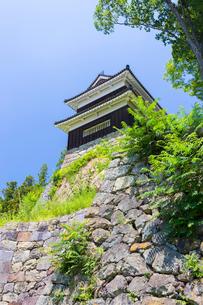 尼ヶ淵から望む上田城南櫓の写真素材 [FYI01716289]