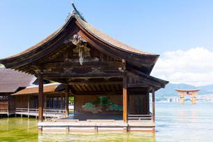 宮島 厳島神社 能舞台の写真素材 [FYI01716345]