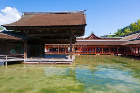 宮島 厳島神社 能舞台の写真素材 [FYI01716566]