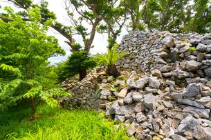 今帰仁城跡、大庭周辺の石垣の写真素材 [FYI01716609]