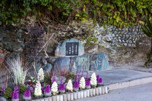 夫婦岩 小路紫峡の句碑の写真素材 [FYI01716619]